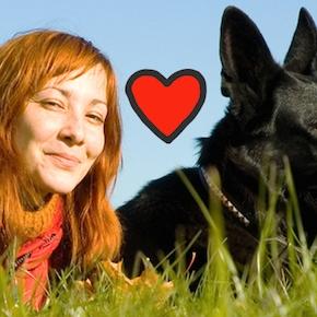 Bestiacce: un crowdfunding per gli amici a 4zampe