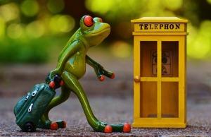 Telefono e Rana